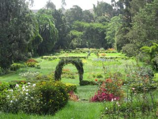 Parks Official A Guide To The Green Spaces Of Addis Ababa Park Urban Park Green Space