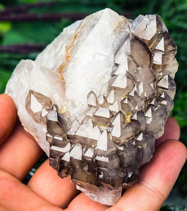 mineralia   mineraliety:  I picture these as tiny houses up a...