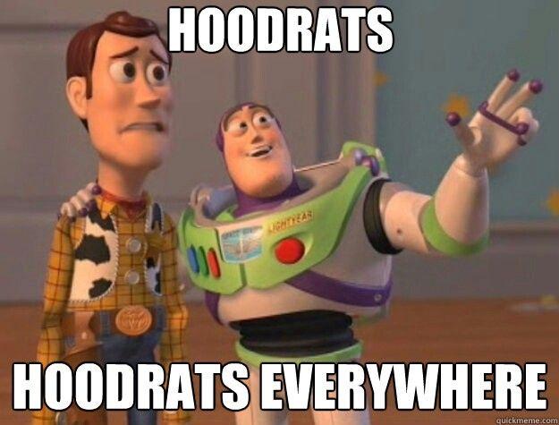 Image result for hoodrats meme