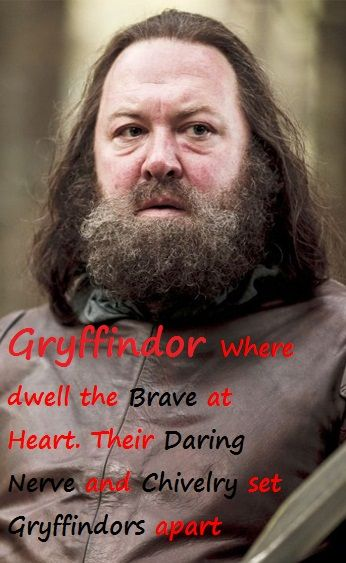 For all that Robert Barratheon is an idiot sometimes you can't doubt his bravery. Game of Thrones, House Barratheon, Harry Potter, Gryfinndor