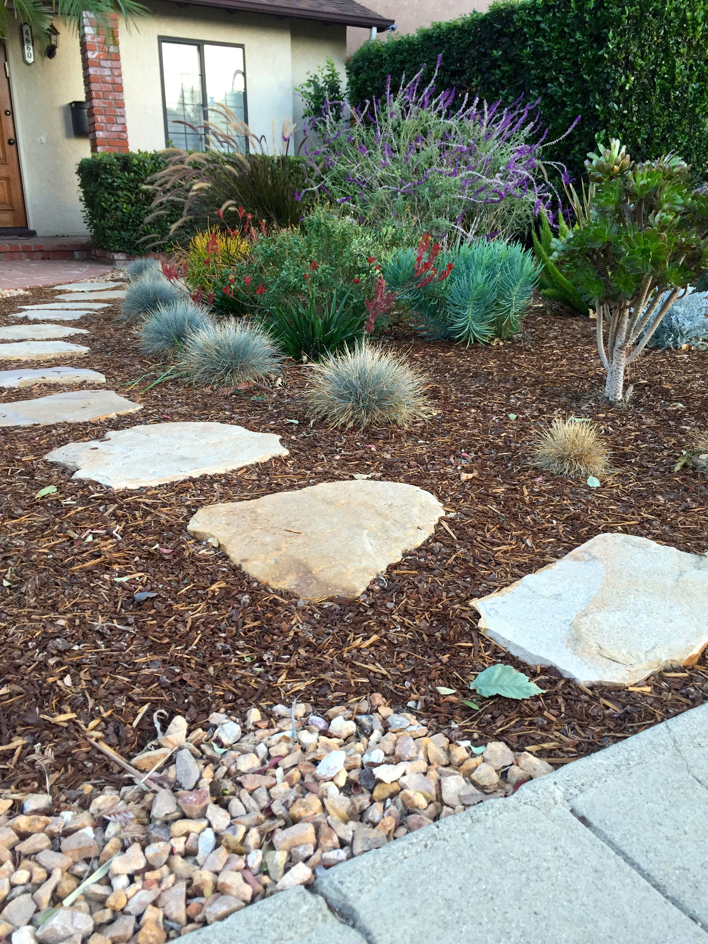 Paving Stone Pathway Surrounded By Mulch Bark And Colorful Low Water Plants In This Drought Resistant Landscaping