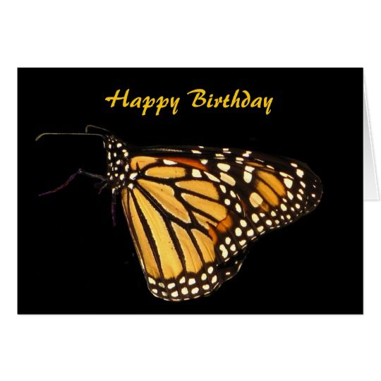 Monarch Butterfly Birthday Card Zazzle Com Butterfly Birthday Cards Butterfly Birthday Butterfly Canvas Beautiful, free images gifted by the world's most generous community of photographers. monarch butterfly birthday card