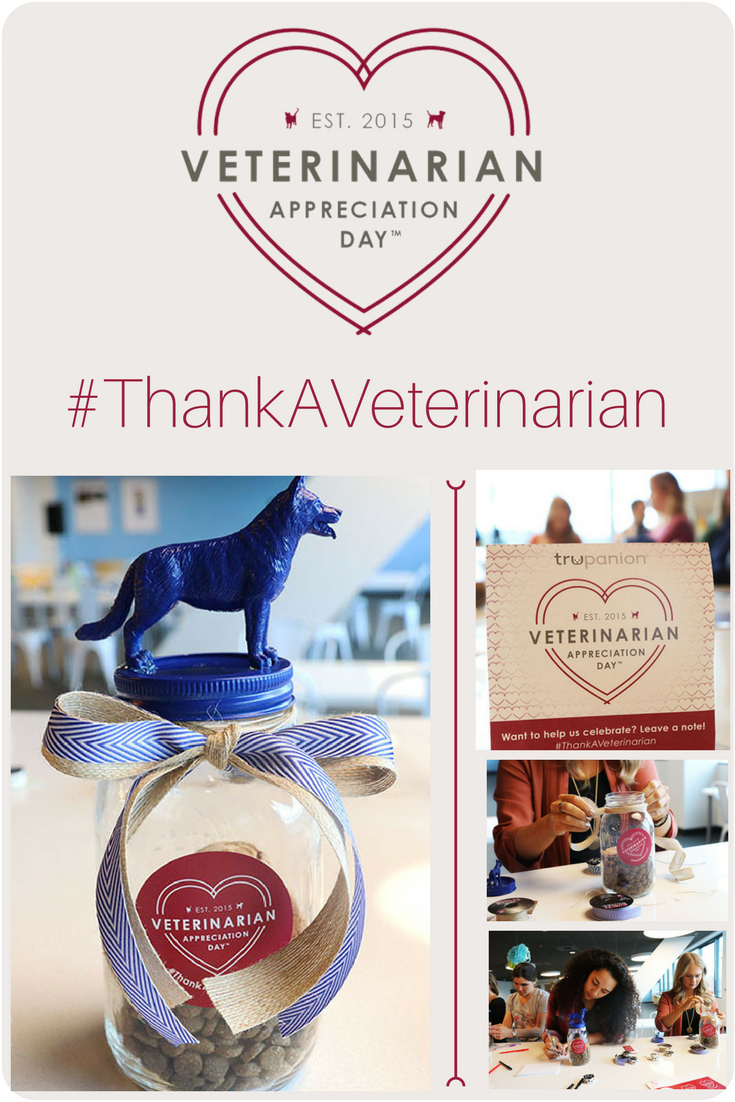 how to thank your veterinarian