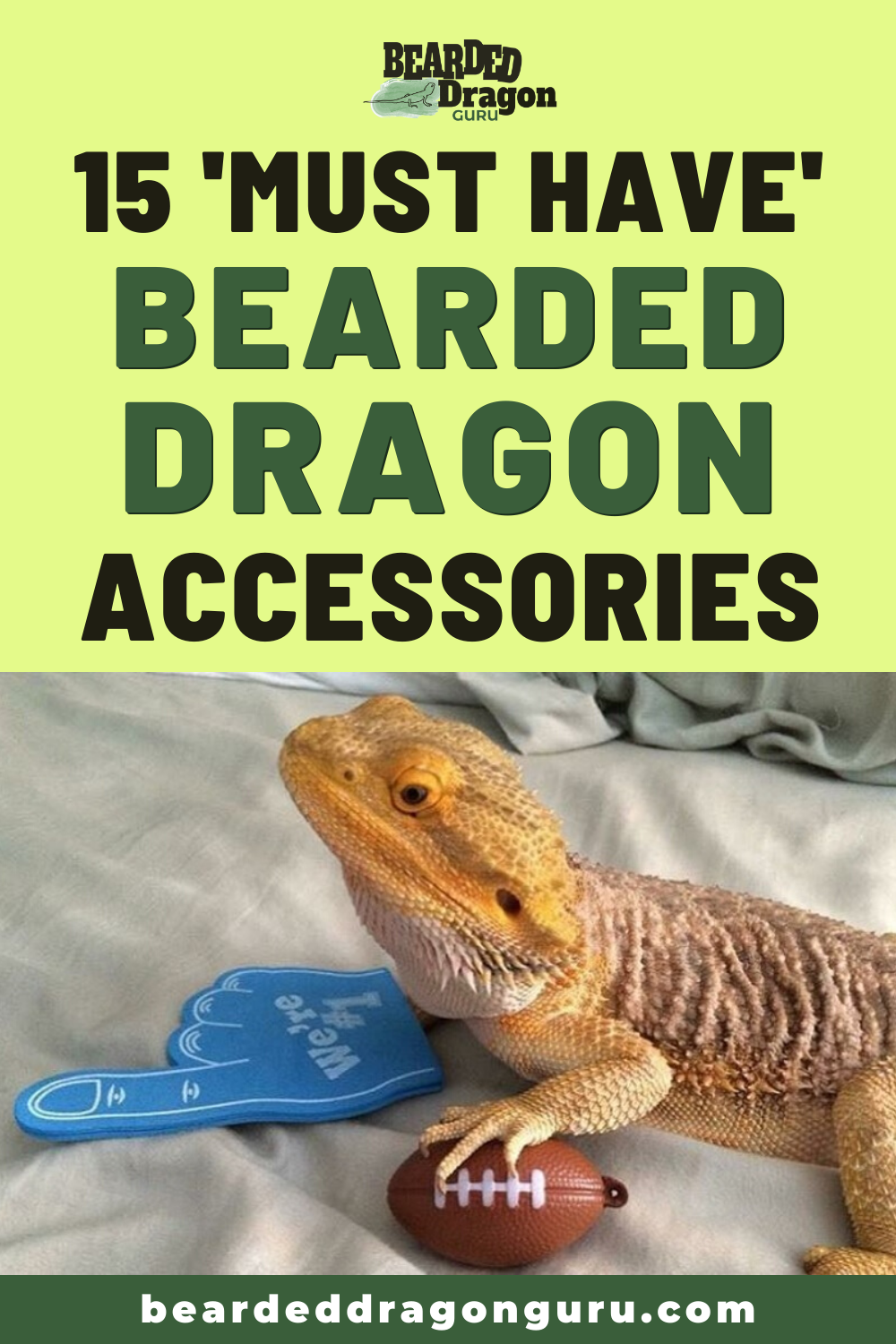 10 [Must Have] Bearded Dragon Accessories  Bearded dragon