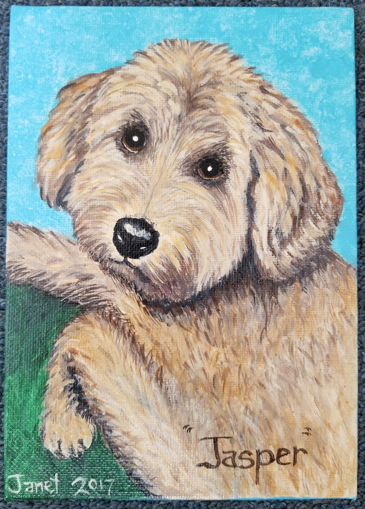 Golden Doodle from Colorado Goldendoodle, Pets, Animals