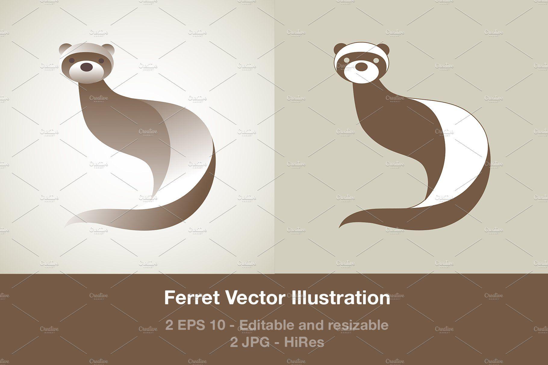 Ferret Illustration Illustration Animal Illustration Graphic Illustration