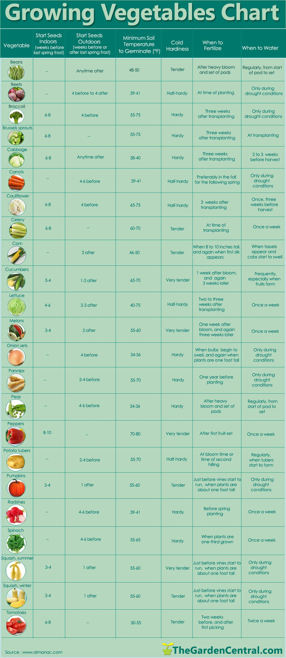 Genial Growing Plants And Food Can Be So Overwhelming, Use This Simple Chart. Growing  Vegetables Chart With Info About Watering, Fertilizing, Growing Seeds.