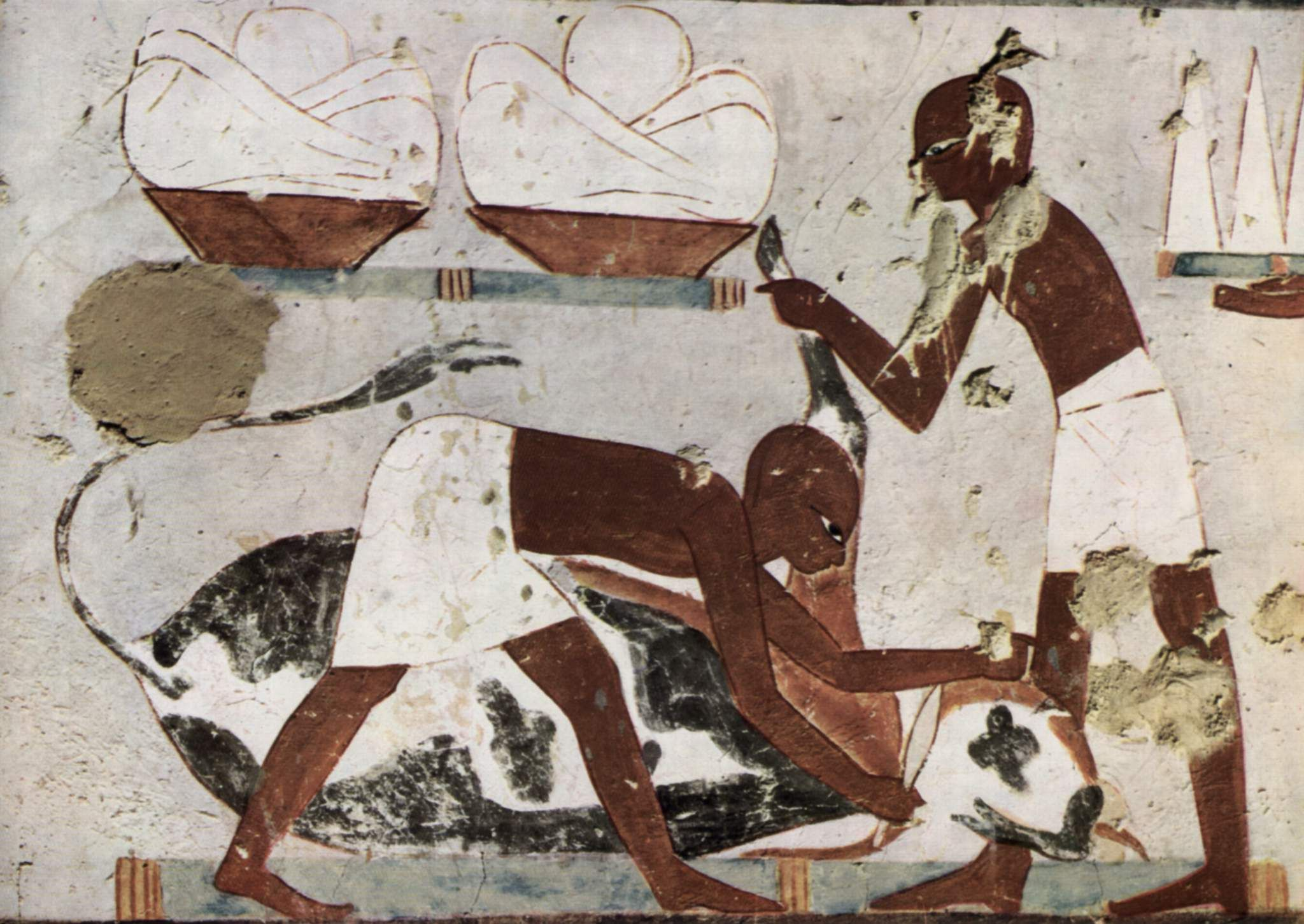 Ancient Egyptian Butchers Notice Their Color The Hebrew