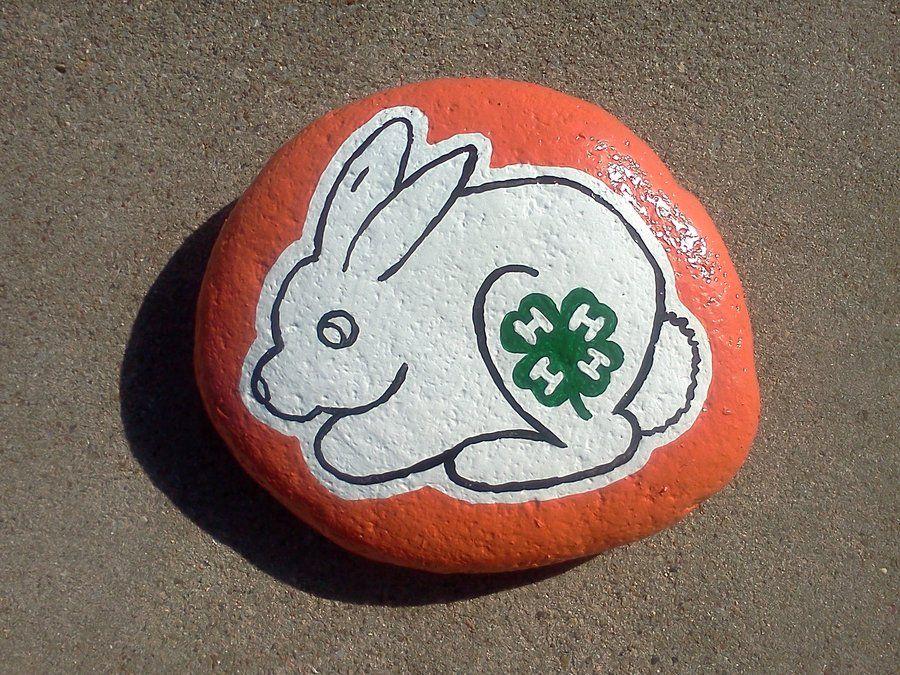 4 H Bunny by ~AmandaFerguson070707 on deviantART