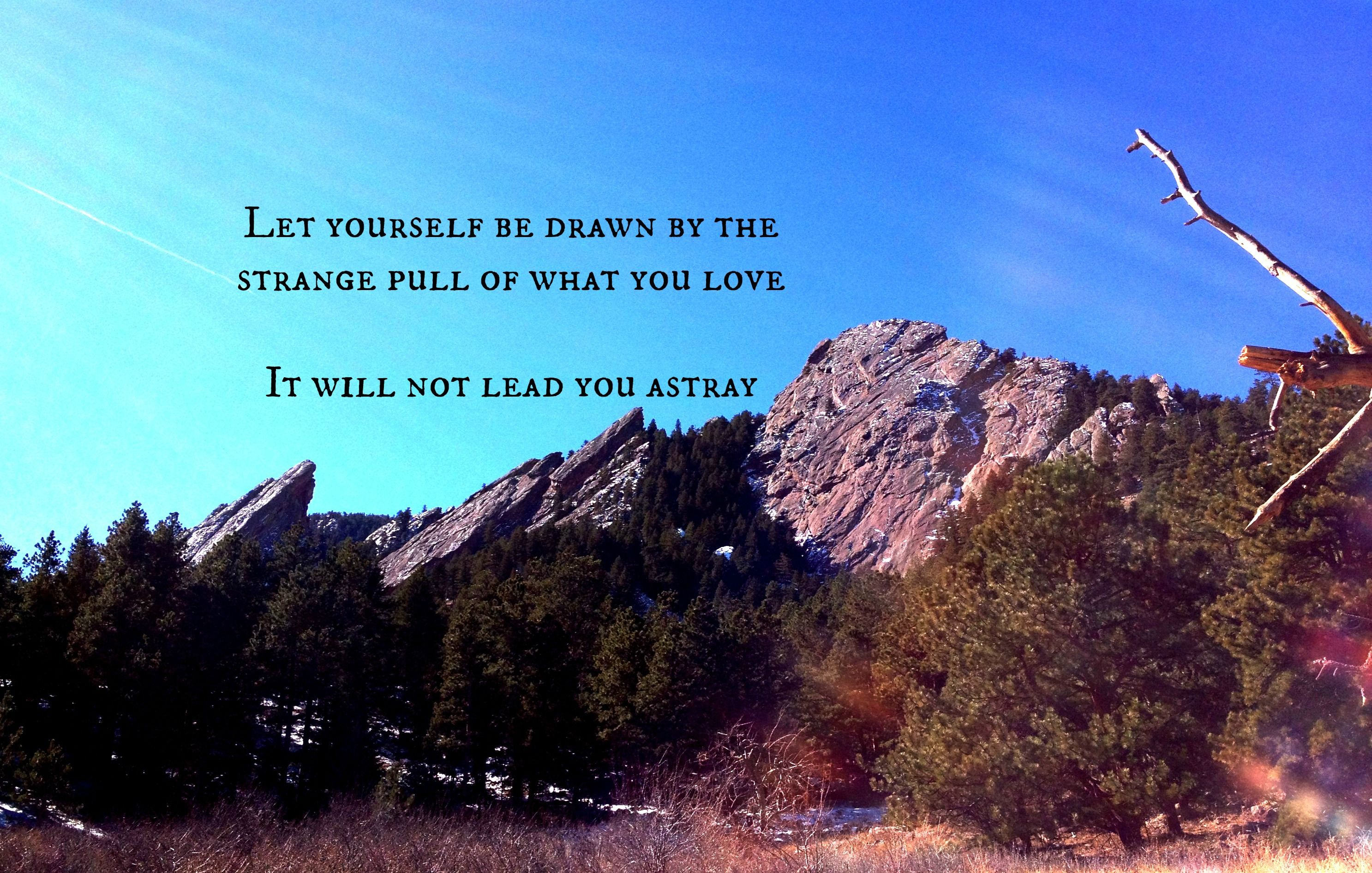 Quote Love Mountains Rumi Quotes Quotes Hiking Quotes Love