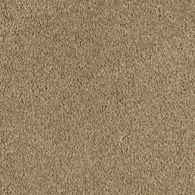LifeProof Carpet Sample Pagliuca II Color Rich Maple