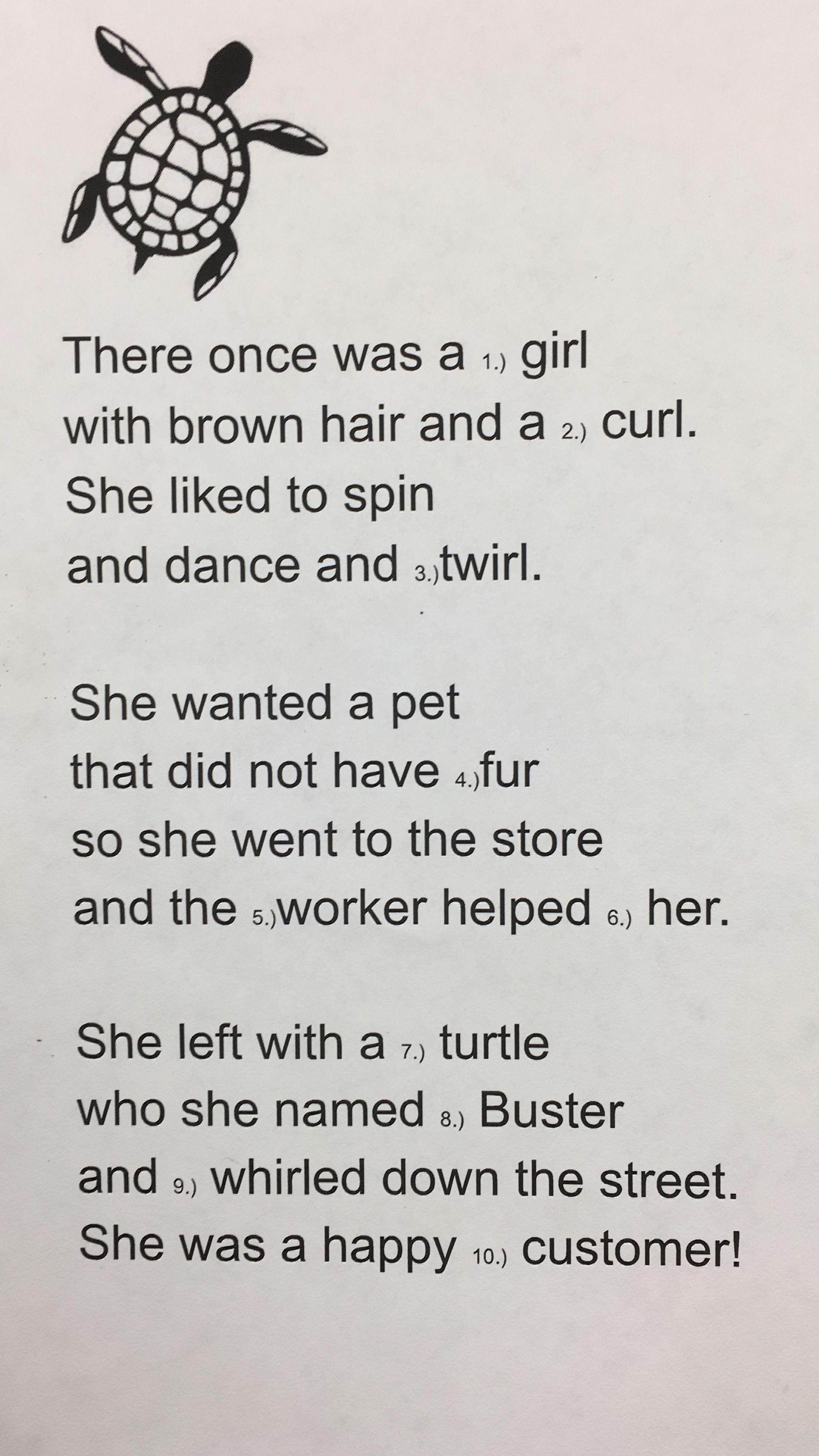 Er Ir Ur Turtle Poem Cloze
