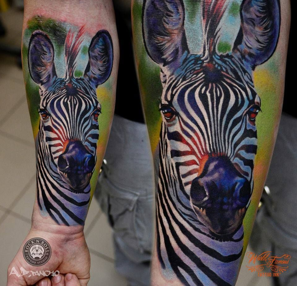 A D Pancho Zebra Tattoo Animal Tattoo Color Tattoo Realistic Tattoo Zebra Tattoos Animal Tattoos Stripe Tattoo