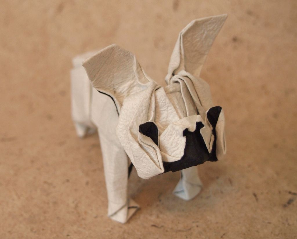 How to Make Origami of a Bulldog Face Step by Step | Free ... | 824x1024