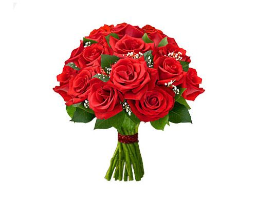 Online Flower Delivery In Abu Dhabi, Contact #Breeze