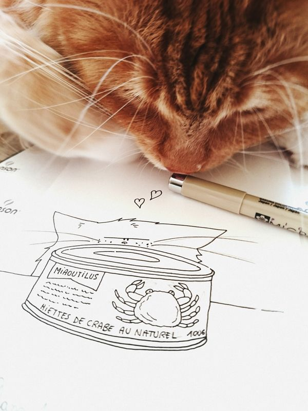 #dcaout / cat and crabe seafood / le chat et sa boîte de crabe