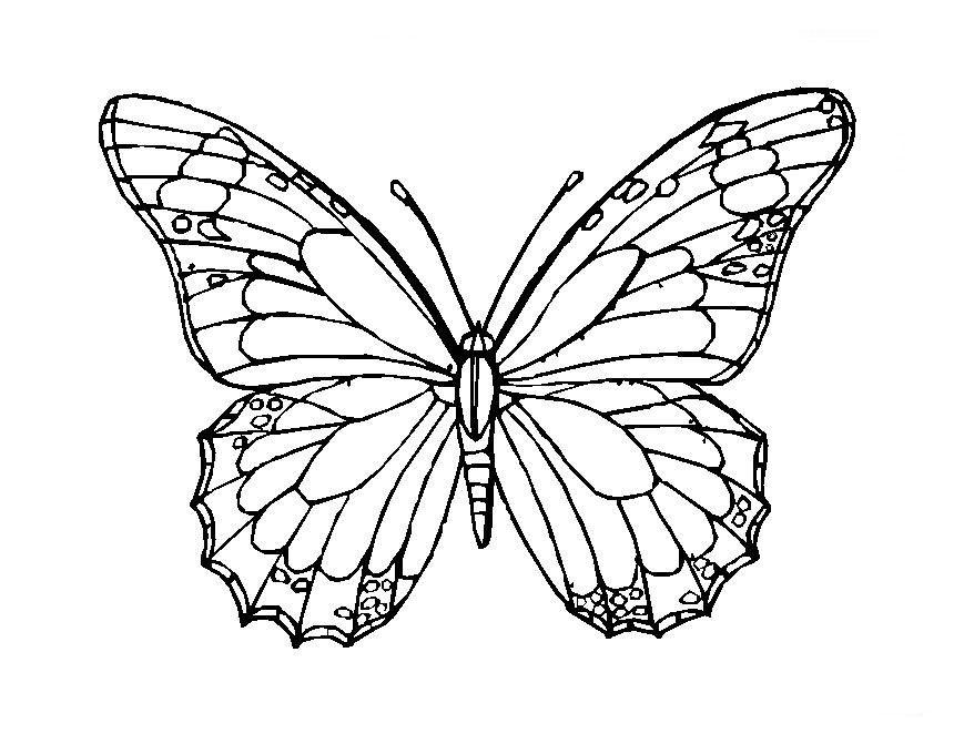 Resultado de imagen de mariposas mandalas   mandalas   Pinterest ...