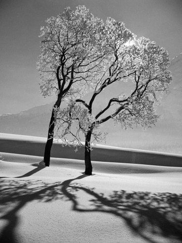 Switzerland, 1947 | Alfred Eisenstaedt photography