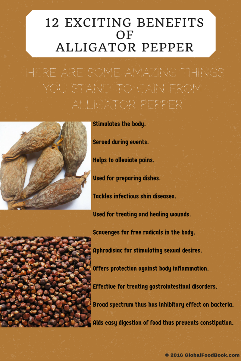 12 EXCITING BENEFITS OF ALLIGATOR PEPPER | AGD_EXCITING