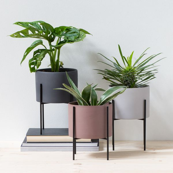 35 Indoor Garden Ideas To Green Your Home: Find Inspiration Online At Søstrene Grene. Find Stores And Great Ideas For Creative Projects For