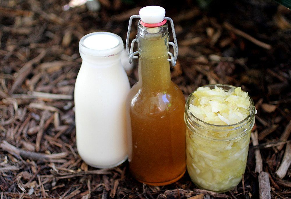 Licorice Kombucha Recipe Fermentation recipes