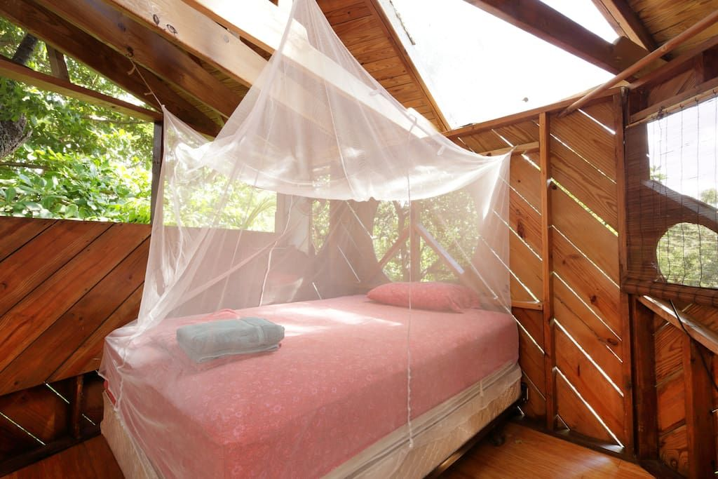 Check out this awesome listing on airbnb treehouse canopy