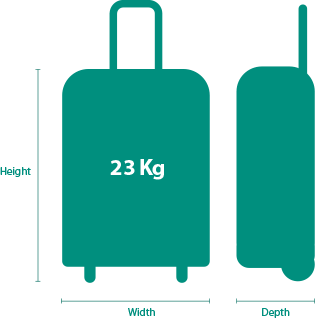 Checked Baggage | Baggage, Start pack, Travel