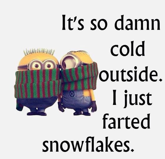 It S Sooo Cold Outside Minions Funny Funny Quotes Funny Minion Memes