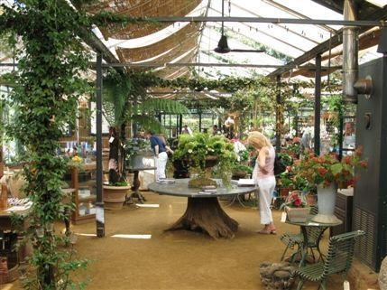 Petersham Nurseries Cafe And Teahouse Richmond Garden Mykonos Tropical