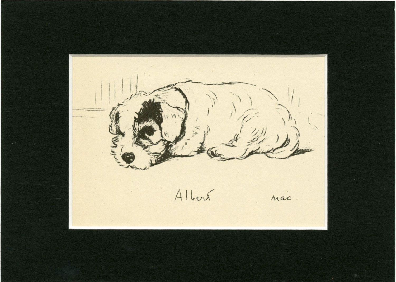 Lucy Dawson Bulldog Puppy MATTED Dog Print