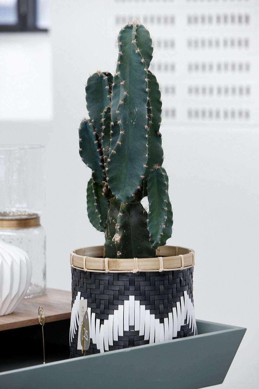 l ssiger blumen bertopf korb im ethno style von h bsch interior wohnen mit pflanzen. Black Bedroom Furniture Sets. Home Design Ideas