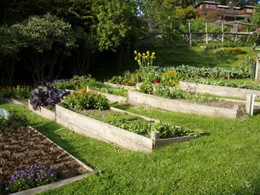 Idea For Garden Bed On Slope Outdoor Living Landscaping