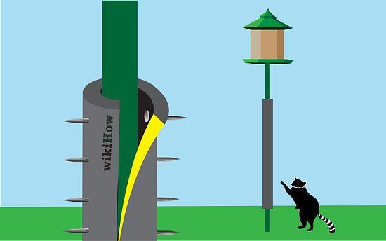 How To Keep Raccoons Off Your Bird Feeder Pole Bird Feeder Poles Bird Feeders Bird House Feeder
