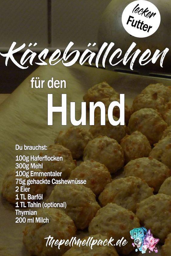 Hundekekse mit Käse, Tahin und Cashews | The Pell-Mell Pack