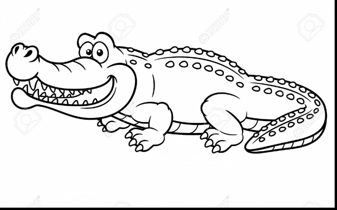 Surprising Alligator Coloring Pages With Alligator Coloring Page