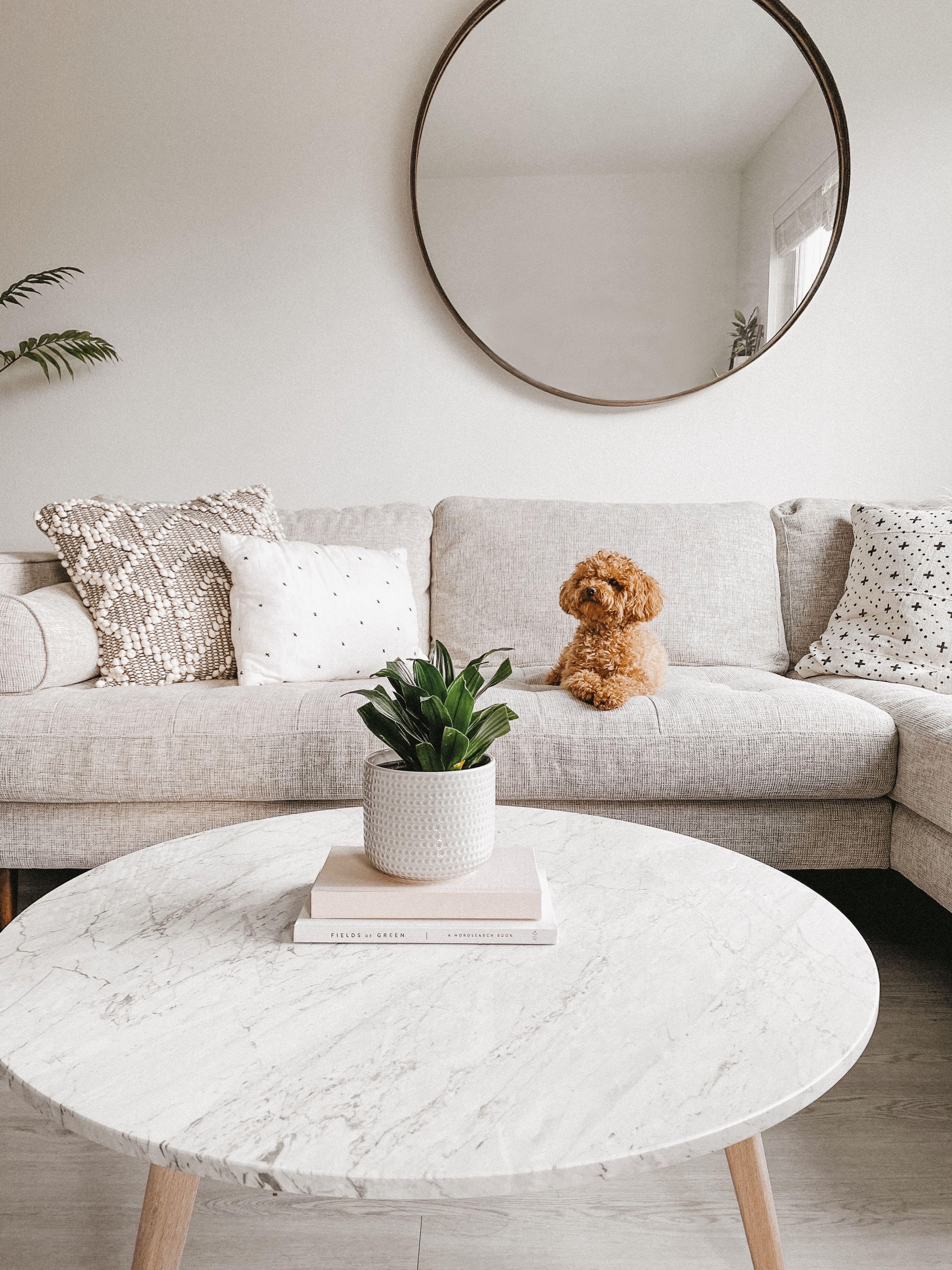 Pin On Home Interior Design Minimalist Neutral Boho