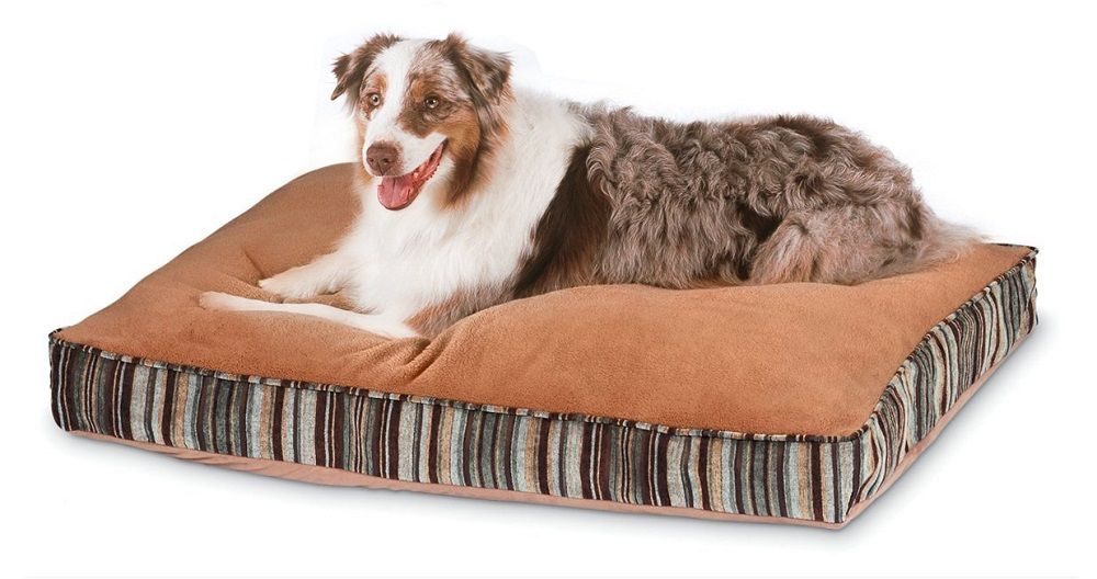 The following are the most considerable requirements of most of the pet owners when it comes to selecting the best dog beds for large dogs.