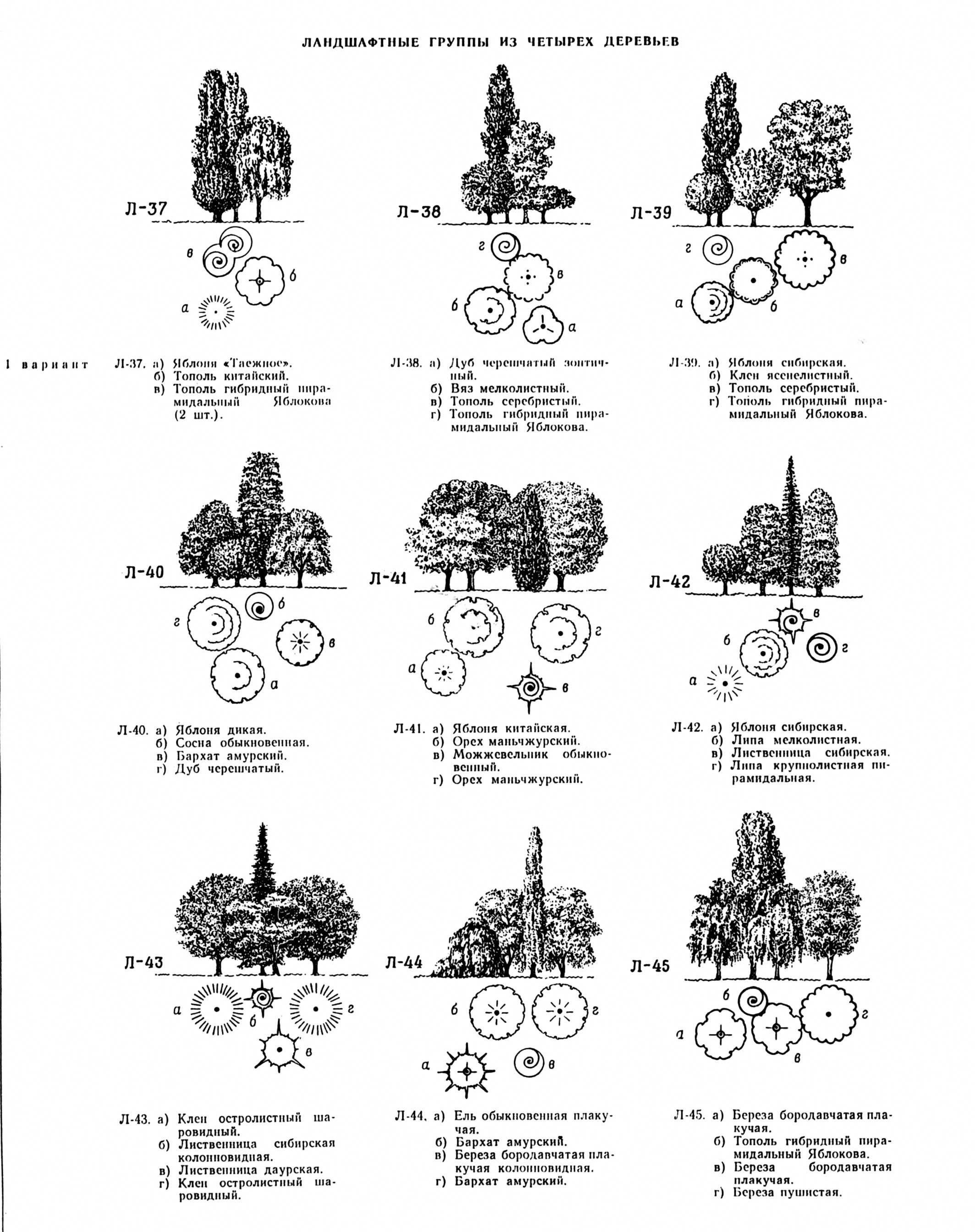 Short Course Landscape Gardening | Landscape architecture ...