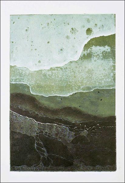 shorelinedelta16x23.jpg 412×602 pixels