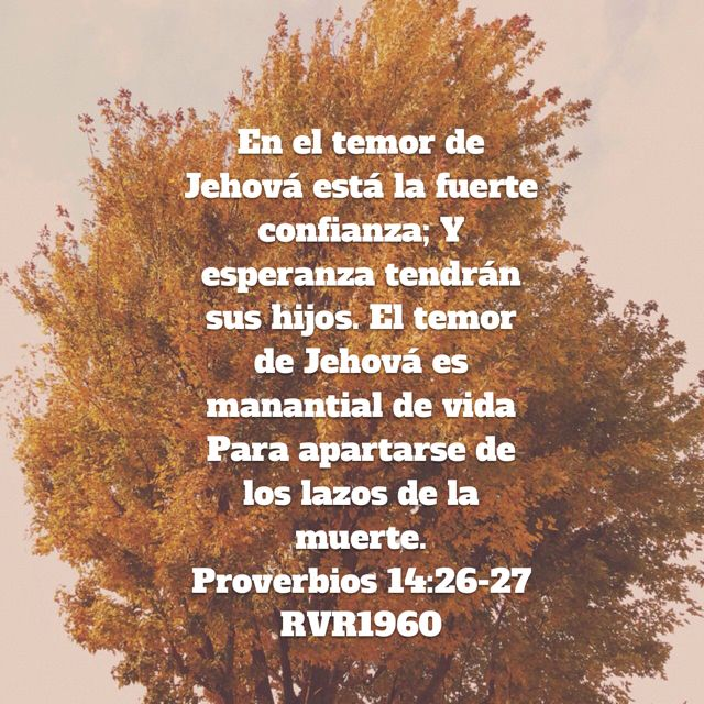 wallpapers Proverbios 14 26 artofit