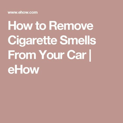 How To Remove Mold From A Car S Interior Smoke Smell