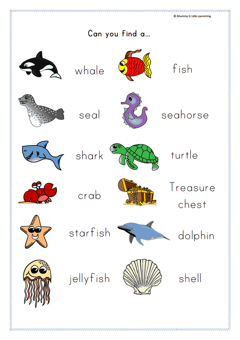 Sea Animals With Names | www.pixshark.com - Images ...