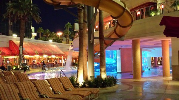 View of shark tank and waterslide from outdoor dining area