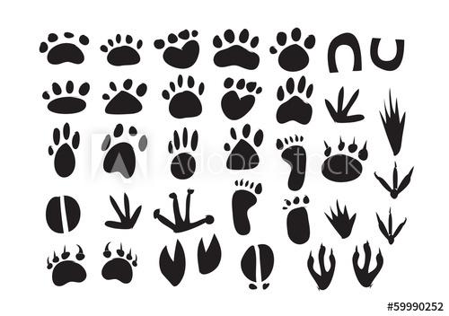 Animal Footprint Vector Buy This Stock Vector And Explore Similar Vectors At Adobe Stock Adobe Stock Animal Footprints Footprint Clip Art