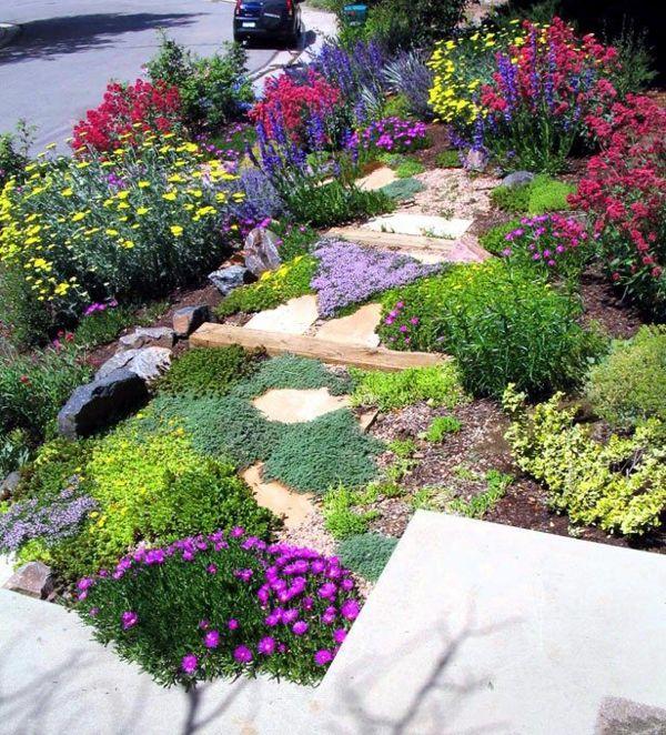 farbenfrohe gartenpflanzen im hanggarten | Tuin idees | Pinterest ...