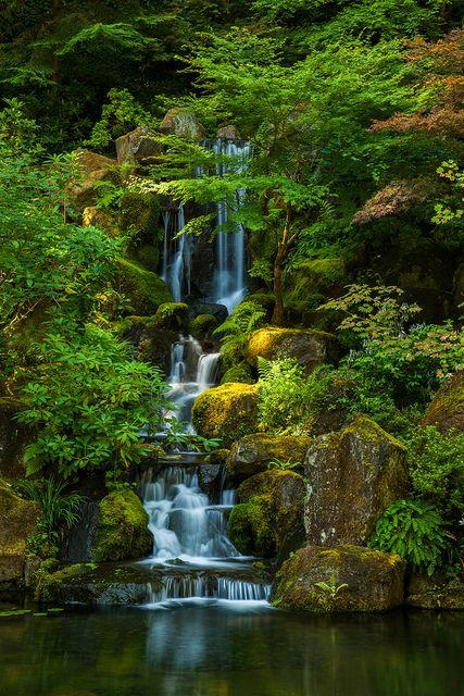 Green Oasis Paisajes, Cascadas y Naturaleza - Cascadas En Jardines