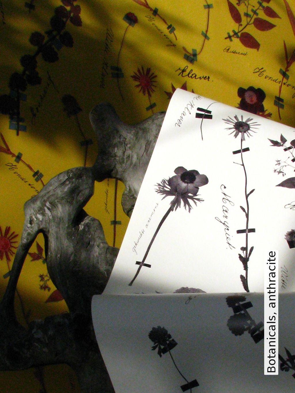 Tapete: Botanicals, anthracite - Die TapetenAgentur