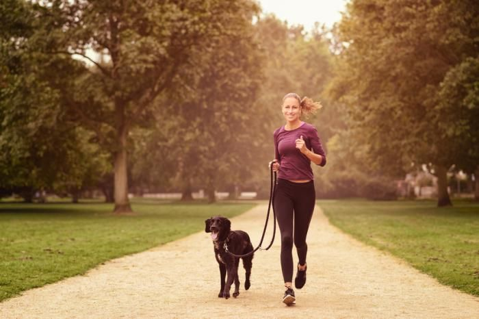 Just 1 hour of exercise offsets health risks of prolonged sitting