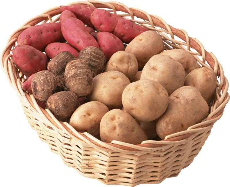 Papas Batatas Papines Verduras Legumbres Hortalizas Material Para La Escuela Vegetables Food Potatoes