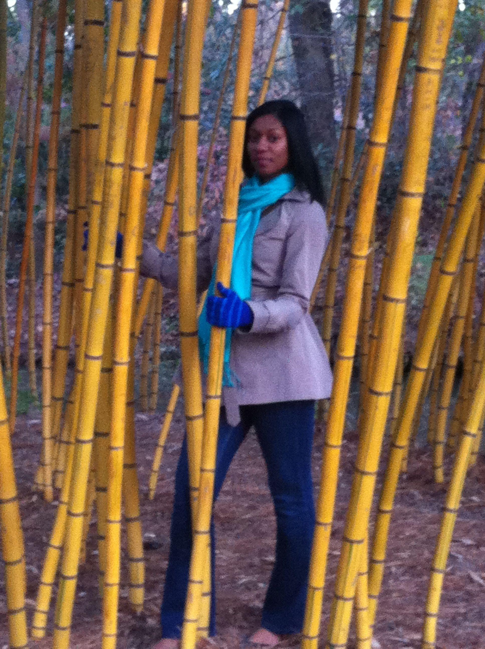 Botanical garden in nc botanical gardens fashion botanical